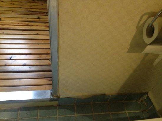 Red Wall Garden Hotel: mildew