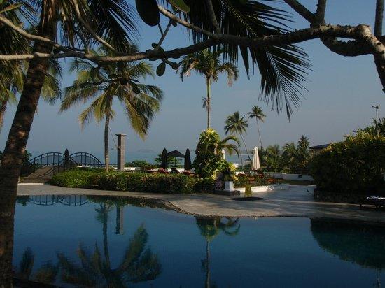 Vivanta by Taj - Bentota : Picturesque Pool
