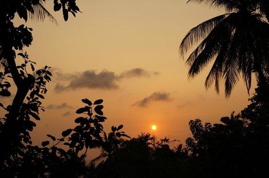 Monkey Flower Villas : sunset