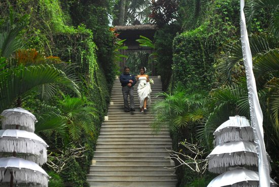 Sukhavati Ayurvedic Retreat and Spa : wedding