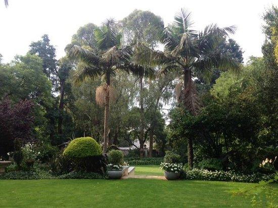 10 2nd Avenue Houghton Estate : Garden
