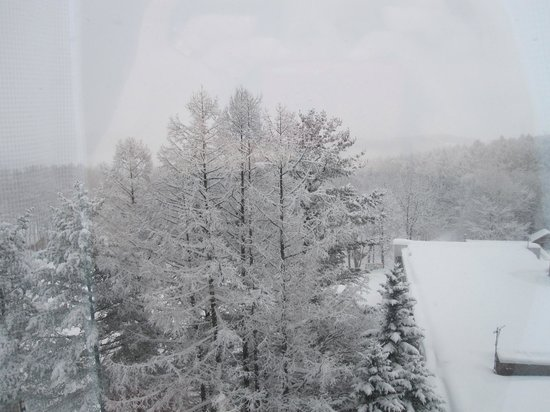 New Furano Prince Hotel : Great Ski in and Ski Out