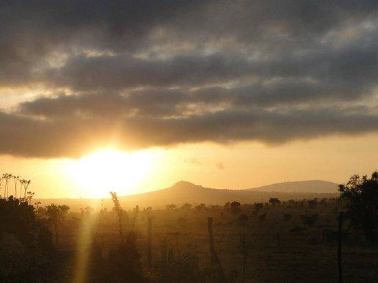 Swara Acacia Lodge: Sunset