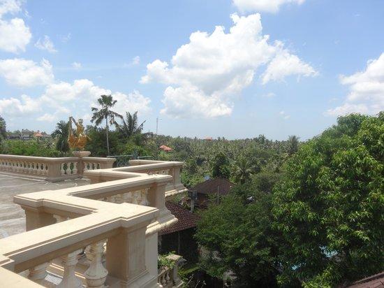 Don Antonio Blanco Museum: Вид в крыши