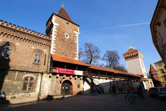 St. Florian's Gate (Brama Florianska) : Brama Floriańska