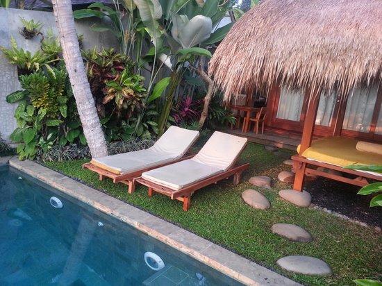 Ubud Padi Villas: 1 room villa with private pool