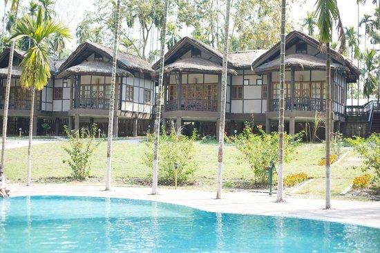 Infinity Resort Kaziranga: rooms view opposite pool area