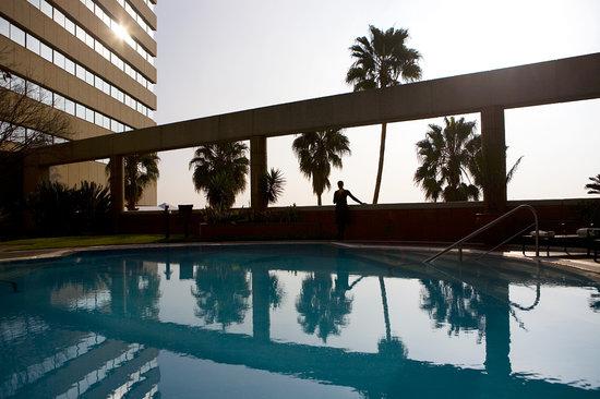 InterContinental Johannesburg Sandton Towers: Pool