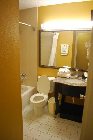 Best Western Plus Music Row: bagno