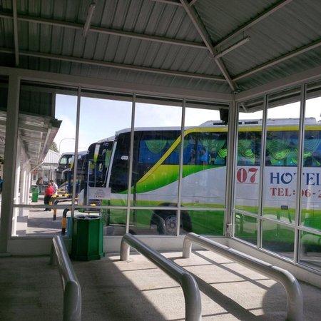 Mushroom Farm Bus Terminal