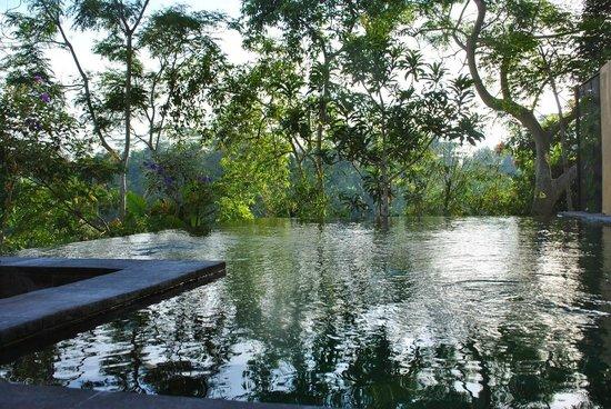 Komaneka at Tanggayuda : Premier pool villa