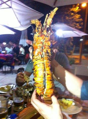 Perlita Morena: aragosta (1,5kg)