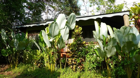 Phidjie Lodge: Bungalow caché derrière la végétation