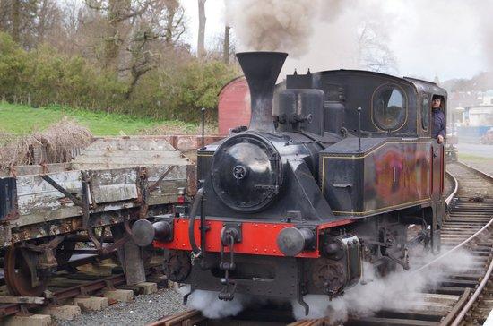 Downpatrick & County Down Railway: Loco No1 at Downpatrick