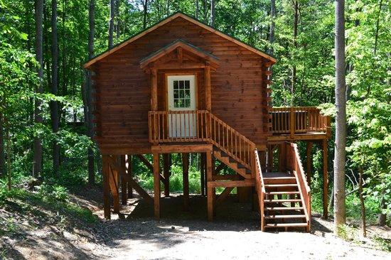 Blue Rose Cabins: Overlook Cabin - Sleeps 2