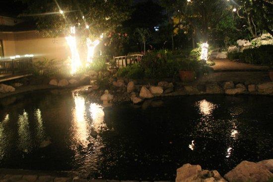 Dusit Thani Manila: Man-made pond