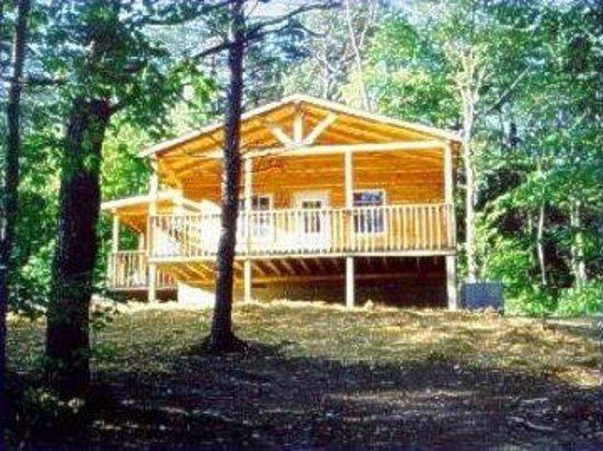 Blue Rose Cabins: Rosebud Cabin - Sleeps 2