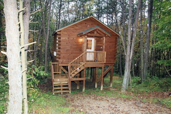 Blue Rose Cabins: Treetops Cabin - Sleeps 2