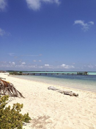 Sorobon Beach & Wellness Resort: Private beach