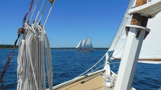 Sail Muscongus Day Tours: The schooner Eastwind off our bow.