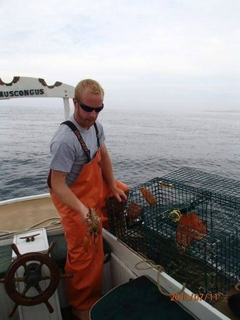 Sail Muscongus Day Tours: Hauling trap