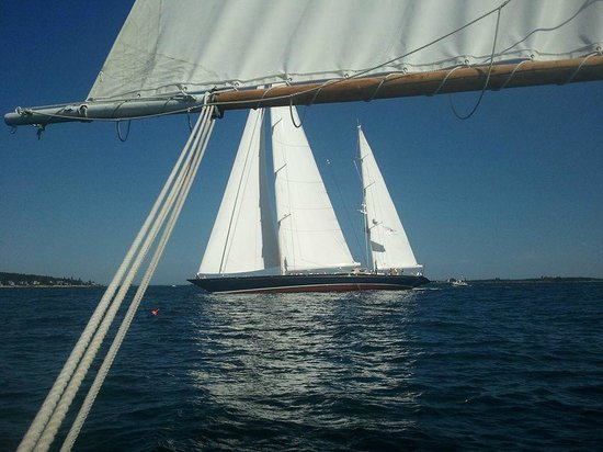 Sail Muscongus Day Tours: Shipyard cup!