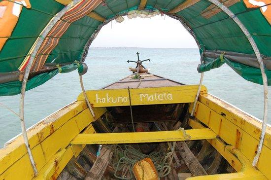 Dream of Zanzibar: Akuna Matata