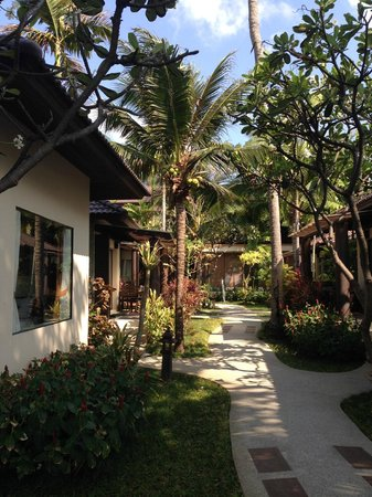Baan Chaweng Beach Resort & Spa : deluxe room