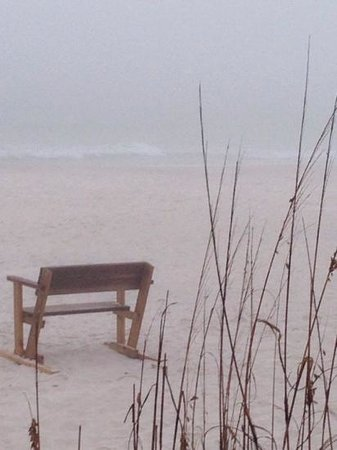 St. Joseph Peninsula State Park: early morning fog on the beach