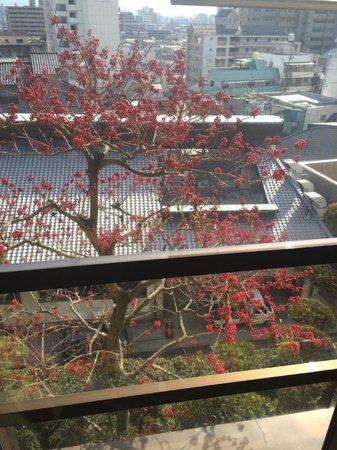 Yamatoya Besso: window