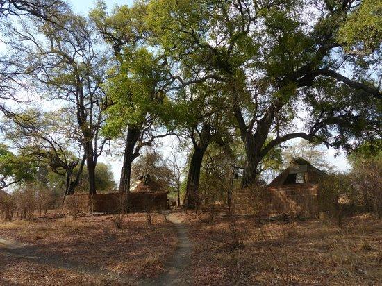 Mwamba Bushcamp (Shenton Safaris) : Two of the three cabins at the camp