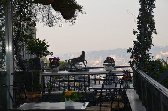 Hotel Splendide Royal: la terrasse