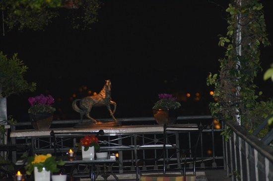 Hotel Splendide Royal: vue de la terrasse