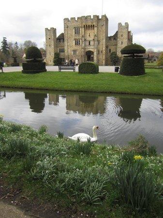 Hever Castle & Gardens: Hever in March