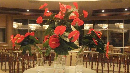 Alva Donna Beach Resort Comfort: Каллы при входе