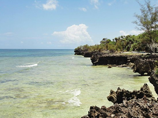 The Sands At Chale Island : View