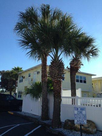 Oasis Palms Resort: Hotell extriör