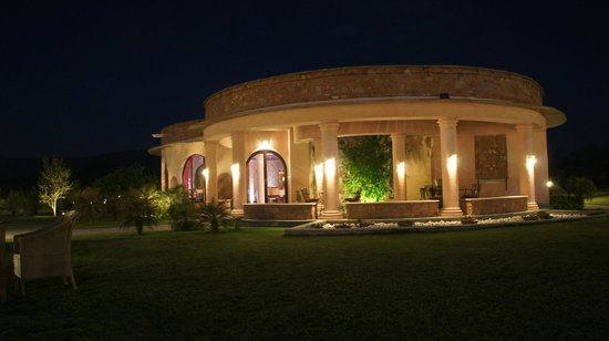 Tree of Life Resort & Spa Jaipur : Bar by night!