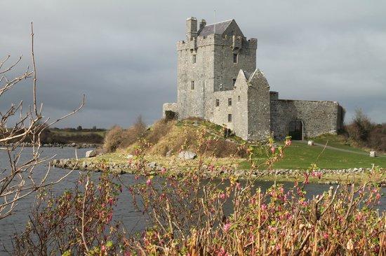 Extreme Ireland / Irish Day Tours : Castle