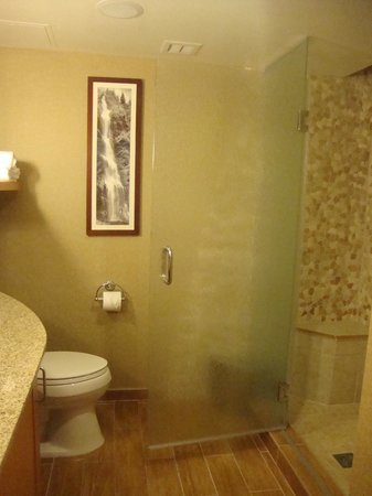 High Peaks Resort: Big bathroom