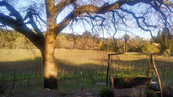 Wine Country Inn & Cottages: view of swing and vineyard