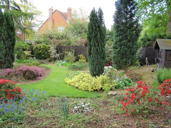 Yew Tree Guest House: our rear garden