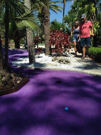 Castle Golf: Sköna färger