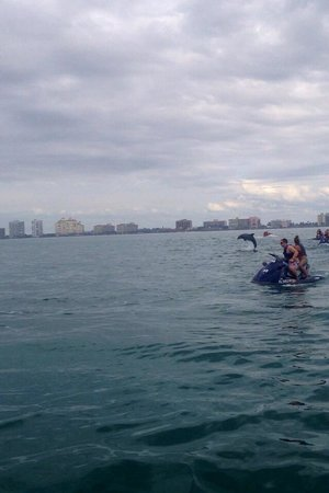 Marco Island Water Sports : Awesome