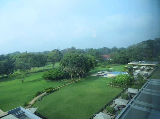Mount Meru Hotel : pool area and grounds behind the hotel