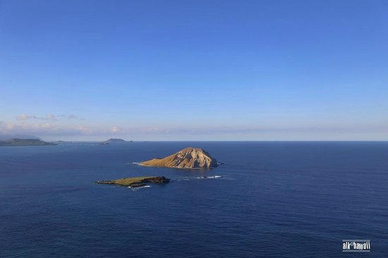 Makapuu Lighthouse Trail: This is where you can see the whale...