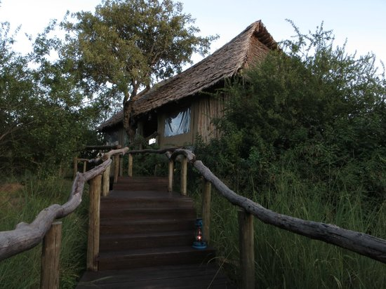 Serengeti Pioneer Camp: The lodge