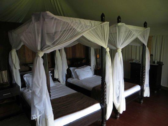 Masek Tented Camp: inside tent