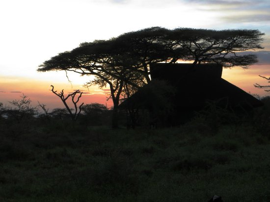 Masek Tented Camp: sunrise at the camp