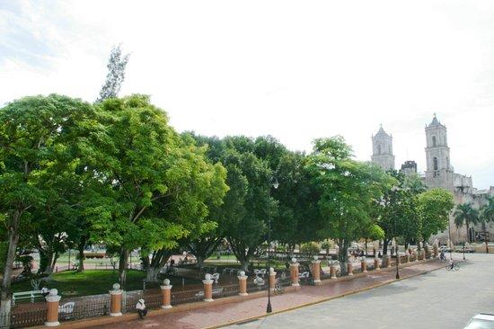 Maria de la Luz Hotel: vista panoramica